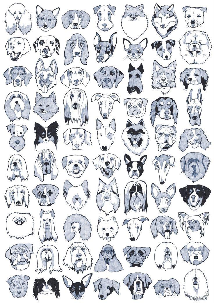DOG_BREEDS_POSTER_b1.jpg (1131×1600)