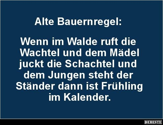 Witzige Spruche Von Regine Schenk Auf Fun Lustige Spruche Witze