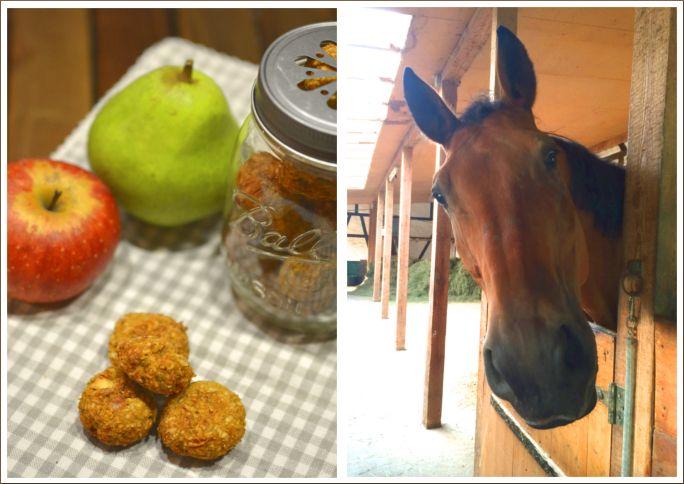 Pferdeleckerlies mit Apfel und Birne