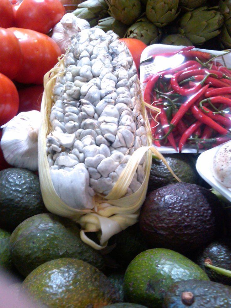 17 mejores im genes sobre ingredientes prehisp nicos en for Semillas de cactus chile
