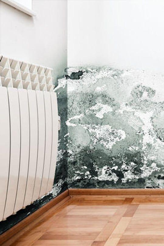 73 best Bricolage et Fiches pratiques images on Pinterest - que faire en cas d humidite dans une maison