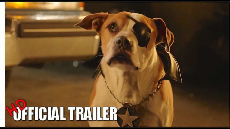 PUP STAR BETTER 2GETHER Movie Trailer 2017 HD - Movie Tickets Giveaway
