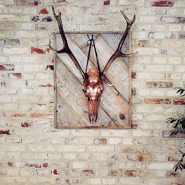 says: enjoy your weekend! #happyweekend #gevir #antlers #forsale #reddeer #rackbuddyshowroom #photooftheday #copper #homeinspiration #homedecor #brickwall #fridaymood #spiceupyourhome