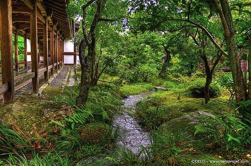 tenryuji, temple, kyoto, world,heritage,japan,deloprojet