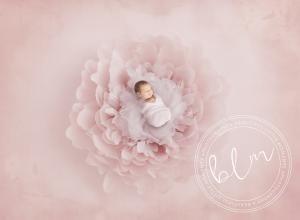 unsettled-baby-newborn-baby-photo-pink-epsom