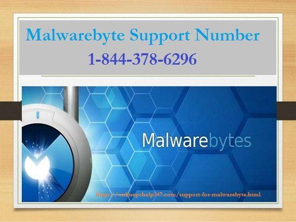 The Malwarebytes virus detector guards your most-used all device