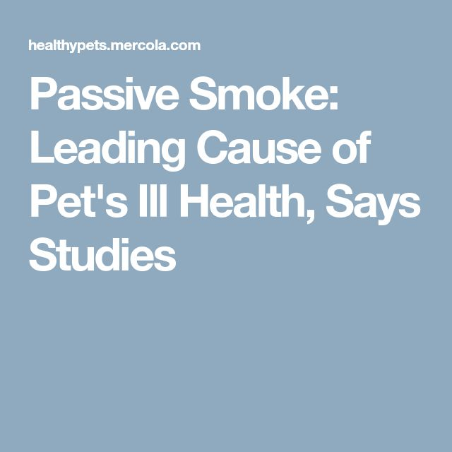 Passive Smoke: Leading Cause of Pet's Ill Health, Says Studies