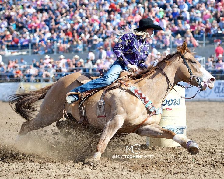 2016 NFR Qualifiers - Barrel Racing: 10 Cayla Melby #nfr16 #barrelracing