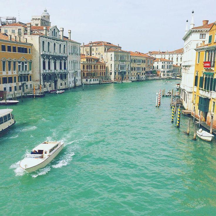 Grand Chanel in Venecia  Ponte dell' Accademia bridge view —  Гранд канал в Венеции - вид с моста Ponte dell' Accademia #creativephototeam #italy #italian #venice #venezia #streetphoto #street #photography #travel #travelphoto #travelphotography #europe #