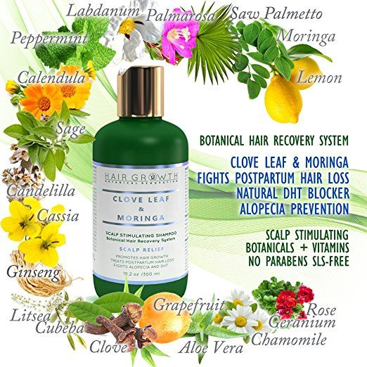 Amazon.com: HAIR GROWTH Clove Leaf & Moringa SCALP RELIEF Shampoo Scalp Stimulating Botanical Hair Recovery System Fights Alopecia / DHT / Postpartum Hair Loss/ Improves Thinning Hair. Sls-Free: Beauty