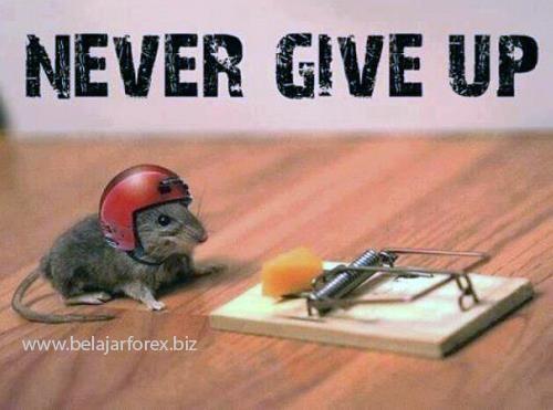 Jangan pernah menyerah sebab menyerah berarti kalah Wajahpun tak akan cerah dan akhirnya hati juga gampang marah. Coba terus tak kenal lelah, Tuhan pasti beri berkah & anugerah - www.belajarforex.biz
