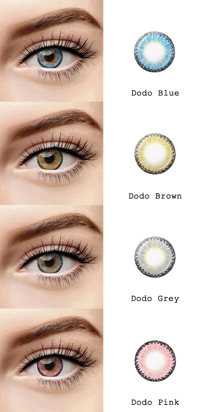 d83c1e63fb72 microeyelenses.com - Colored contact lenses online shop. Dodo series  Blue