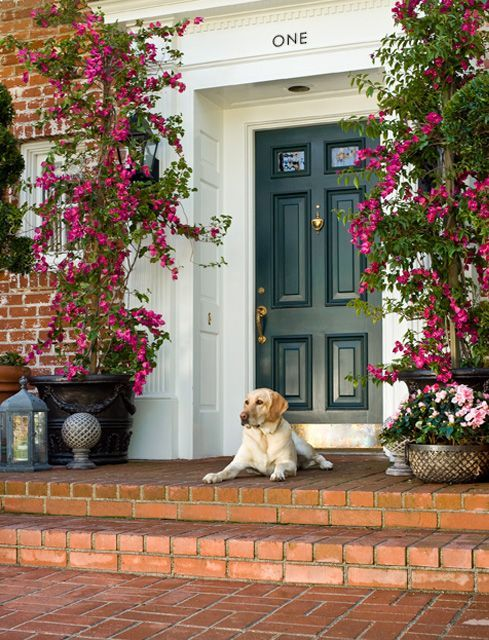 Recessed doorframeModern House Design, Green Doors, The Doors, Dogs, Yellow Labs, Interiors Design, Front Doors, Doors Colors, Front Porches