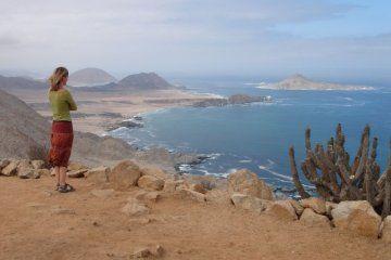 Fun in the desert sun: Pan de Azucar, Chile
