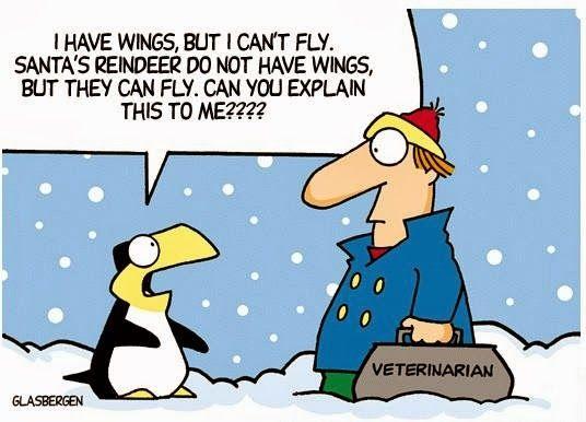 PlayFull: Christmas Funnies