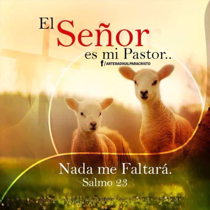 Juan 10:10-11 El ladrón no viene sino para hurtar y matar y destruir; yo he venido para que tengan vida, y para que la tengan en abundancia. Yo soy el buen pastor; el buen pastor su vida da por las ovejas.♔