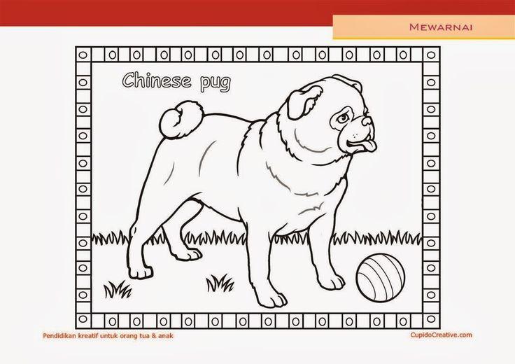 lembar kerajinan anak paud (balita/TK/SD), mewarnai anjing pug