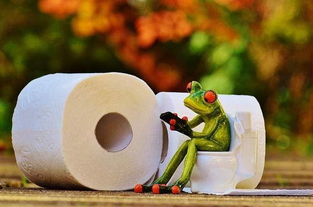 Constipation, diarrhée, couleur... Ce que nos selles, notre popo, la grosse commission, notre caca,  disent sur notre santé