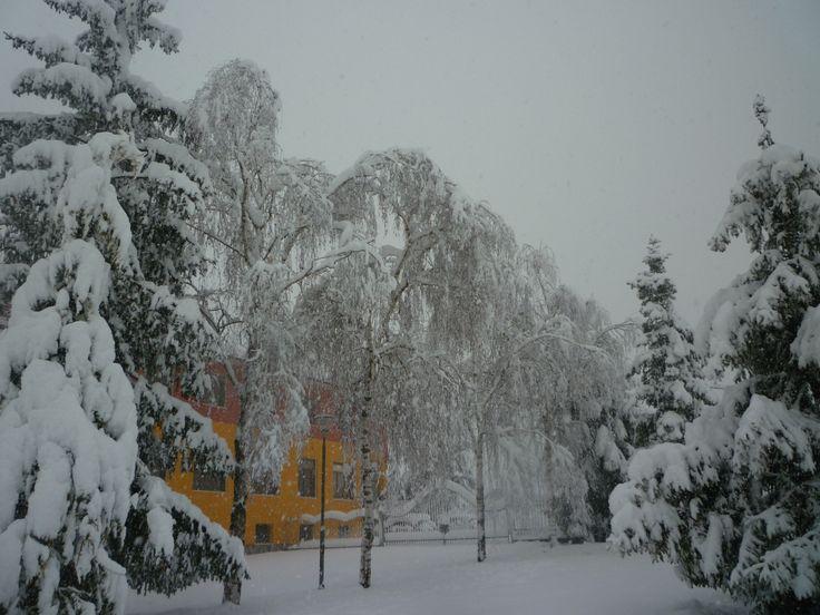 Giardino innevato nel Gennaio 2012!!!