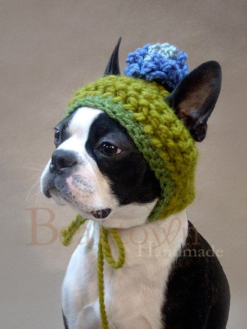 Size MEDIUM Blue Blossom Dog Hat with String by BeanTownHandmade, $28.00