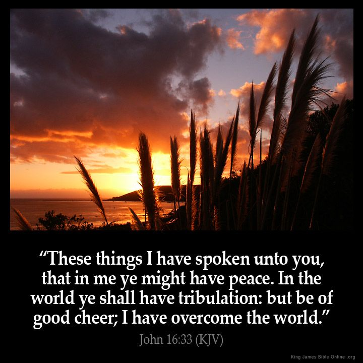 John 16:33  These things I have spoken unto you that in me ye might have peace. In the world ye shall have tribulation: but be of good cheer; I have overcome the world.  John 16:33 (KJV)  from King James Version Bible (KJV Bible) http://ift.tt/1WhuyaX  Filed under: Bible Verse Pic Tagged: Bible Bible Verse Bible Verse Image Bible Verse Pic Bible Verse Picture Daily Bible Verse Image John 16:33 King James Bible King James Version KJV KJV Bible KJV Bible Verse Pic Picture Verse…