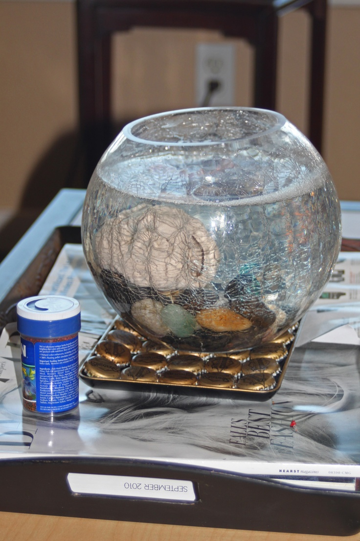 I use the bottle cap tray i made for my fish bowl