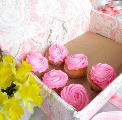 homemade cupcake carrier
