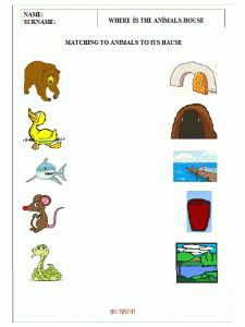 where-do-these-animals-live-worksheets-for-preschool-children-1