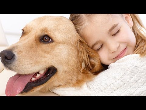 Dog Lover Valentine