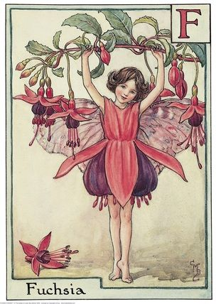 Illustration for the Fuschia Fairy from Flower Fairies of the Alphabet. A girl fairy stands facing front on tiptoe holding on to a branch of a fuschia above her head.  										   																										Author / Illustrator  								Cicely Mary Barker