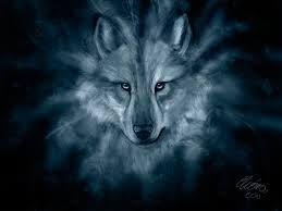 Resultado de imagem para wolf