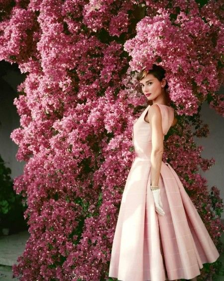Norman Parkinson Audrey Hepburn 1955 Norman Parkinson Archives Z