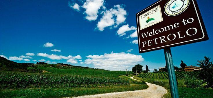 Fattoria Petrolo, #Laudemio producer in Mercatale Valdarno, Arezzo, #Tuscany