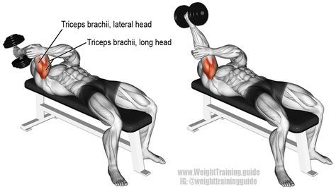 Lying one arm dumbbell triceps extension. Only one muscle is worked: Triceps Brachii.