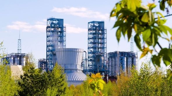 Oil Refinery with Green Leaves in the Foreground