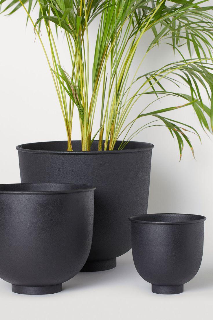 Extralarge metal plant pot potted plants plants black