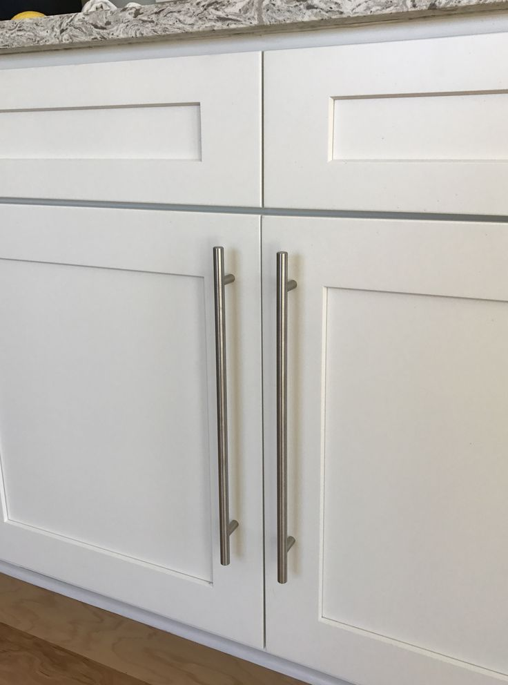 White Shaker Style Cabinets With Stainless Steel European