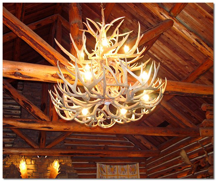278 Best Images About Chandeliers On Pinterest: 25+ Best Ideas About Deer Antler Chandelier On Pinterest