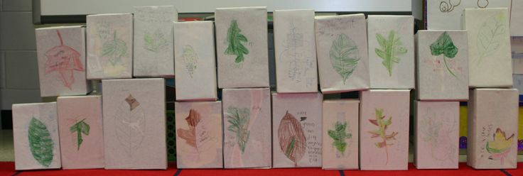 Classroom Journal Ideas ~ Best images about nature journaling on pinterest