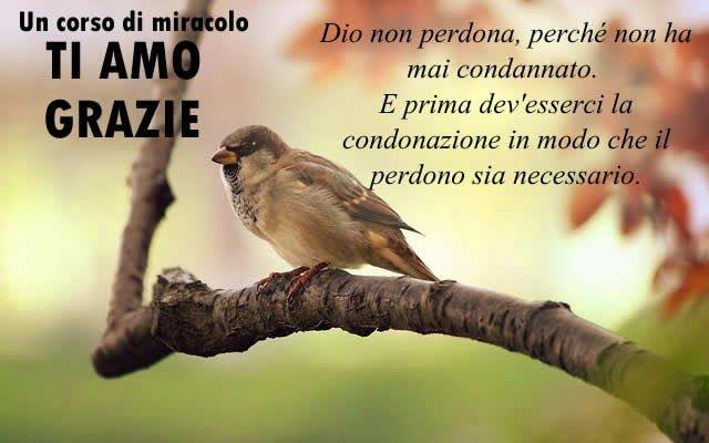 Un corso di Miracoli.: Lezione 46 del libro di testo. Dio è l'amore attraverso il quale perdono.