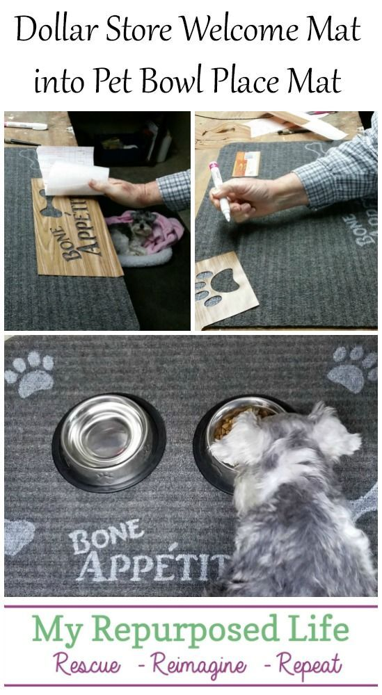 Use a dollar store welcome mat to make a dog bowl mat. This easy and inexpensive project can be customized for your dog or cat. Easy stenciling with a Sharpie paint pen will have this project completed in time for Fido's dinner.