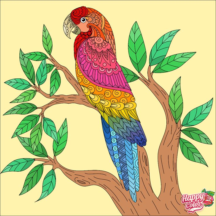 Polly.......Branch Manager! Happy colors, Colorful art