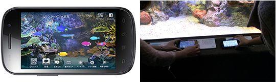 超絶行きたい! やってみたい!東京は池袋にあるサンシャイン水族館で、スマートフォンに水族館の情報を取り込み各種SNSと連携して楽しめるサービ...