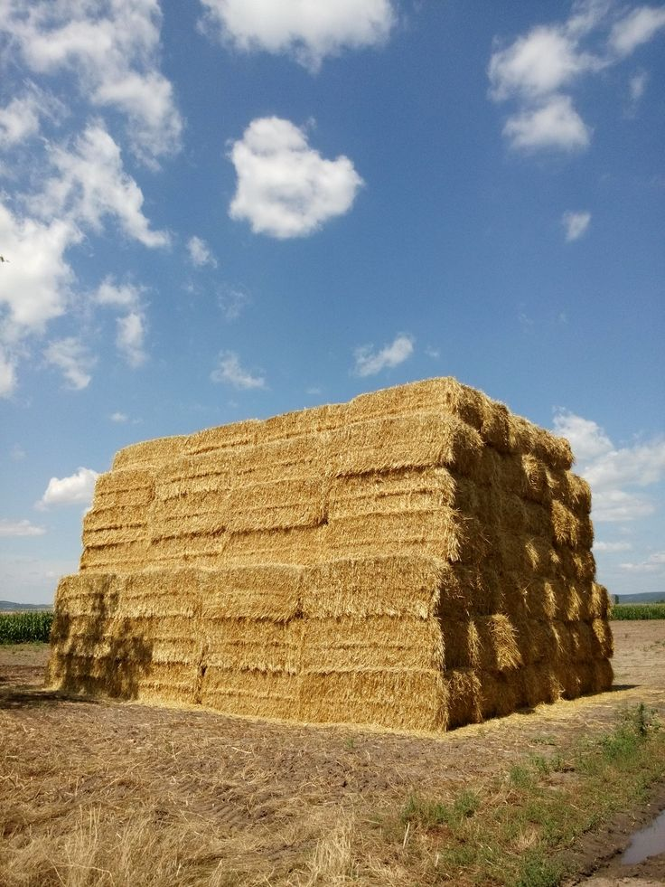A giant stack of straw.