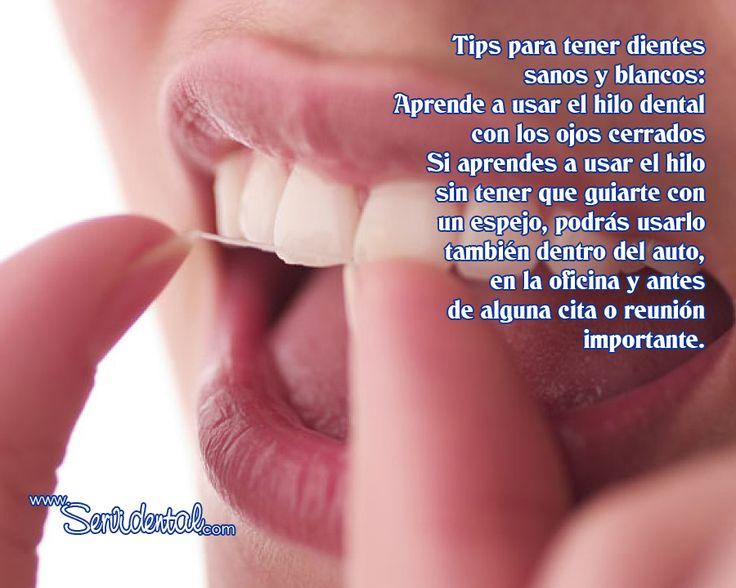 La seda dental es una herramienta vital en el cuidado de tus dientes y aseo diario.