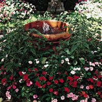 Turn any large container into a garden fountain by adding a simple pump. You can place a fountain like this anywhere that you can get access to an electrical outlet.