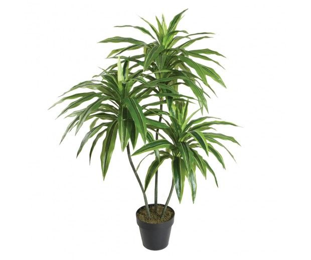 artificial dracaena palm spacegreen