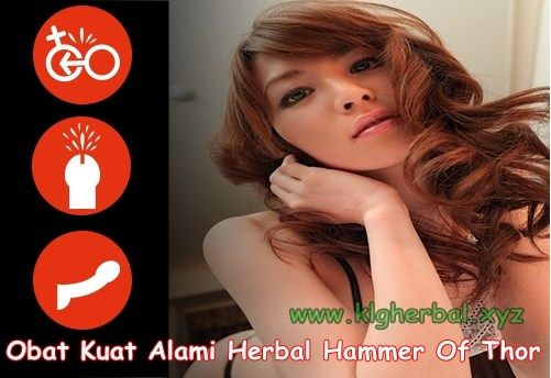 Obat Kuat Alami Herbal Hammer Of Thor