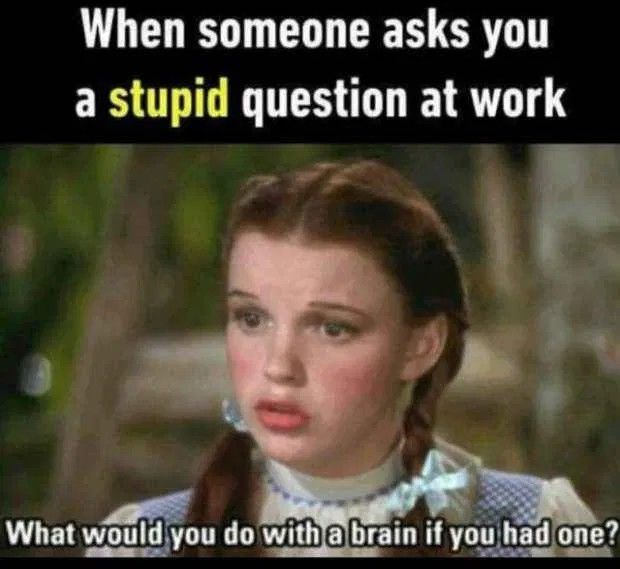Funny Memes About Work Work Memes Funny Coworker Memes