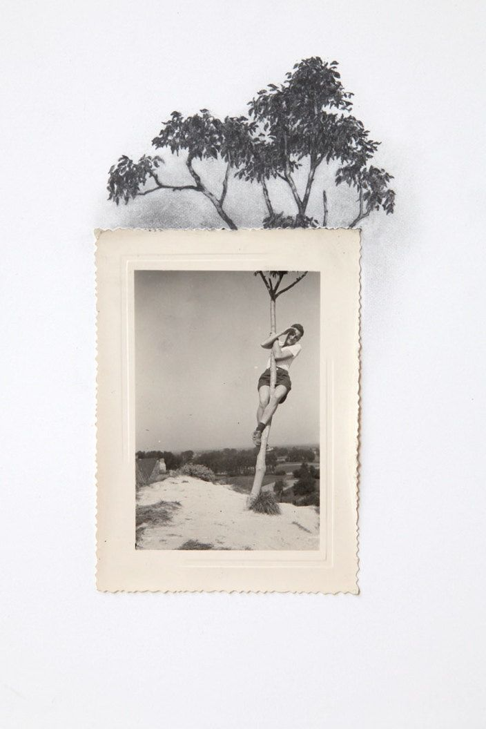 Drawing with Vintage Photo - Man Climbing Tree